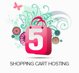 Shopping Cart Hosting